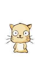 zodiac_Cat